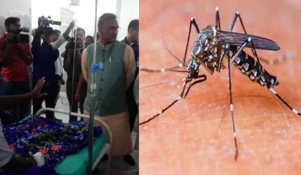 State not sponsor dengue